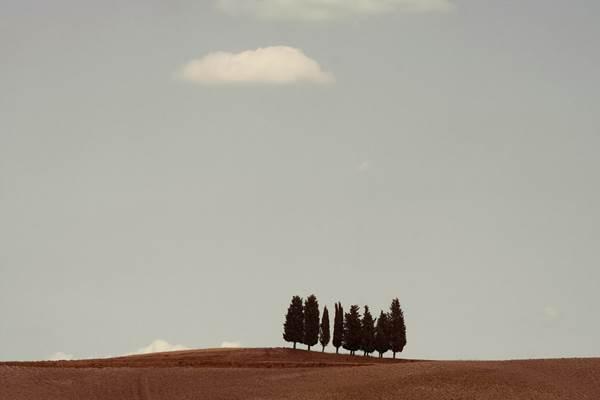 Alessandro Calvi, Italian Landscape 03, The Auction Collective
