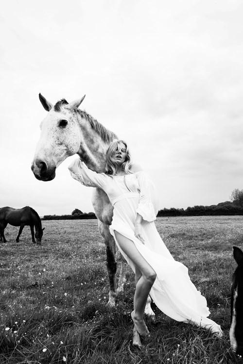Future Dreams - Lot 6, Simon Emmett, Sienna and a White Horse