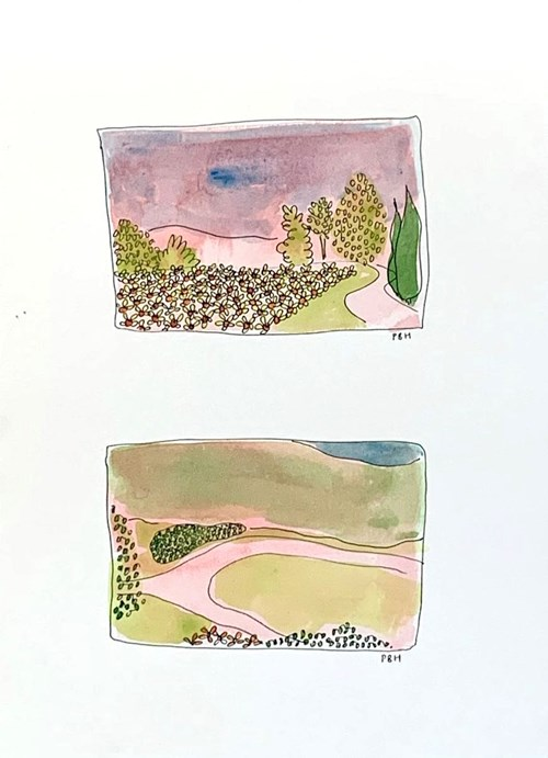 Life on Venus   The Landscape, Timed Auction - Lot 12, Poppy BH, Summer Roads