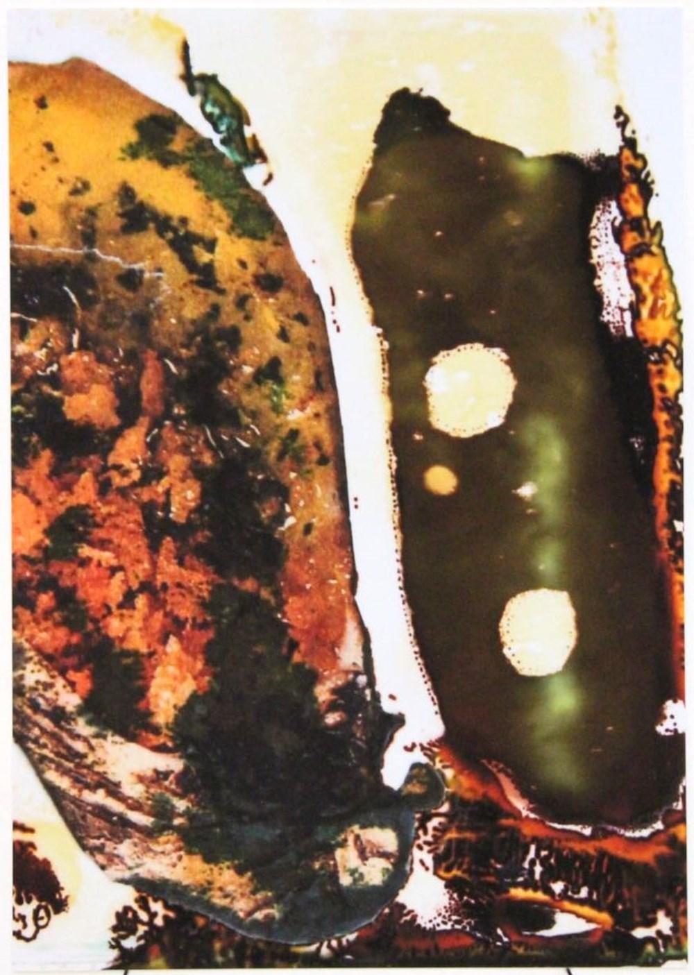 Life on Venus III | The Organic, Timed Auction - Lot 28, Sandy Sigala, My Fluid Little Babies
