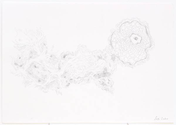 Sophia Sofianou, The Birth of Venus, The Auction Collective