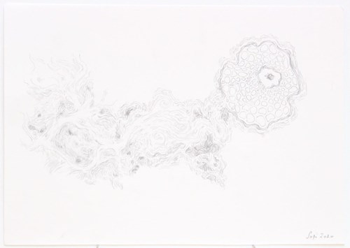 Life on Venus III | The Organic, Timed Auction - Lot 18, Sophia Sofianou, The Birth of Venus